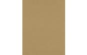 8 1/2 x 11 Cardstock