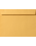 9 1/2 x 12 5/8 Booklet Envelopes