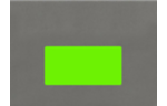 4 x 2 Rectangle Labels, 10 Per Sheet Fluorescent Green