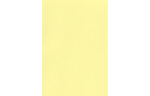 6 x 6 Pockets Top Layer Card Lemonade
