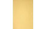 6 x 6 Pockets Top Layer Card Gold Metallic