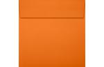 5 1/2 x 5 1/2 Square Envelopes Mandarin