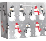 Medium (10 x 8 x 4) Gift Bag