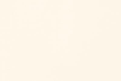 Bright White 80lb. Eggshell