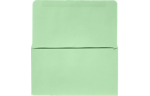 6 3/4 Remittance Envelopes Pastel Green