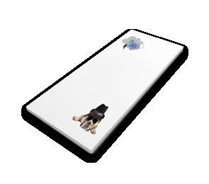 Notepads   Envelopes.com