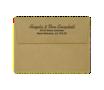 Grocery Bag Envelopes