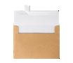 LUX Sparkle Envelopes