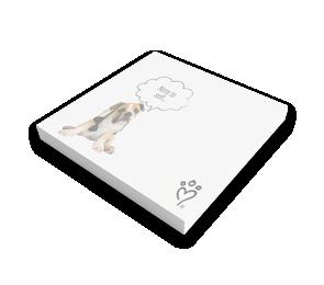 Sticky Notes   Envelopes.com